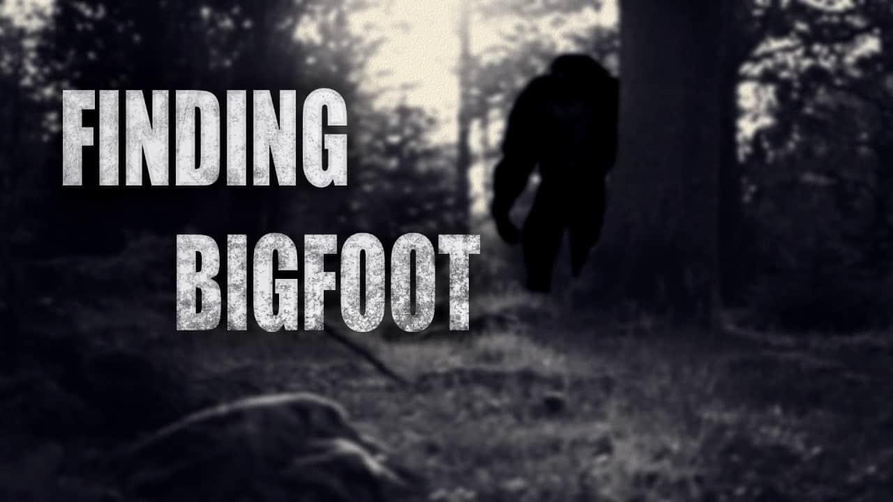 Bigfoot frei herunterladen