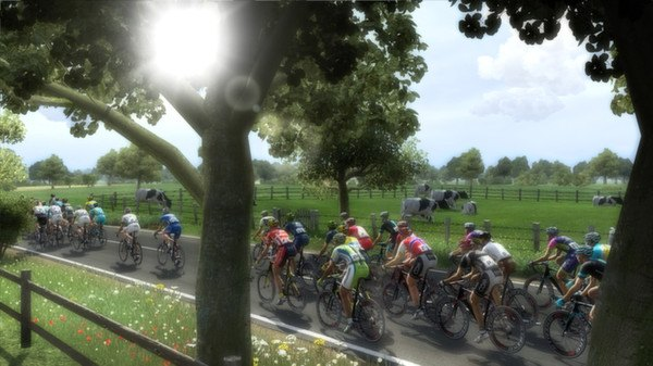 Pro Cycling Manager 2014 kostenlos