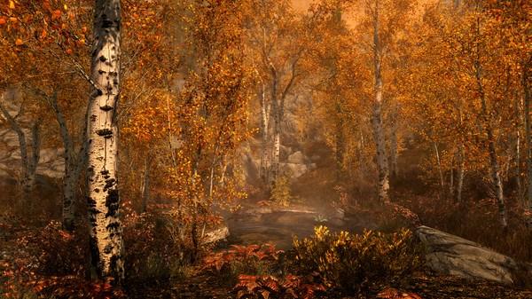 The Elder Scrolls V Skyrim Special Edition kostenlos