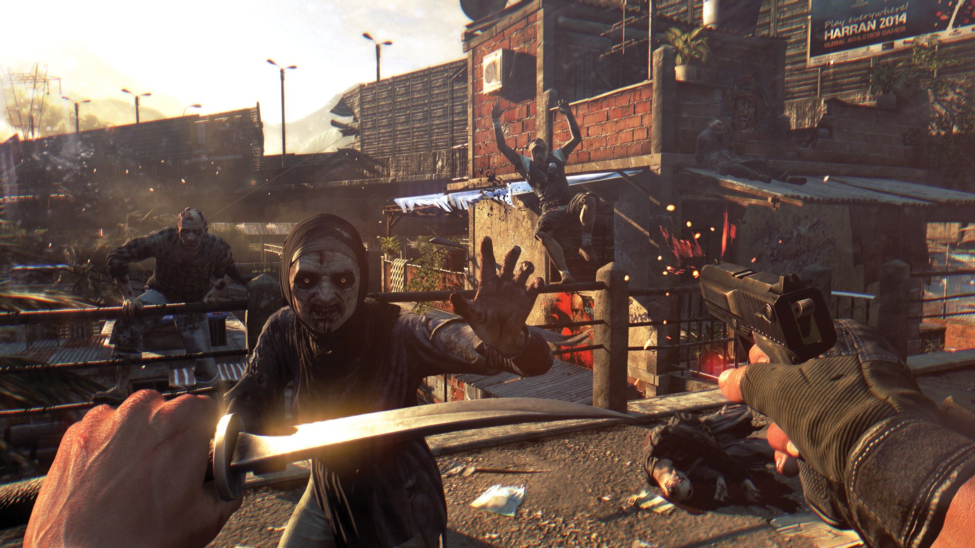 Dying Light The Following image 6